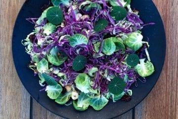 Opskrift på sprød kålsalat