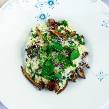 Risotto med svampe - Opskrift på svamperisotto med spinat