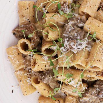 Pasta med oksemørbrad i cremet trøffelsauce - Opskrift